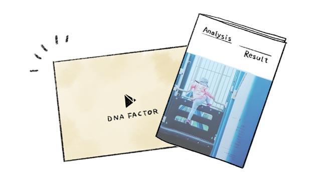 dnaファクター分析結果